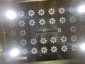 Jaimini Glass Lift 1